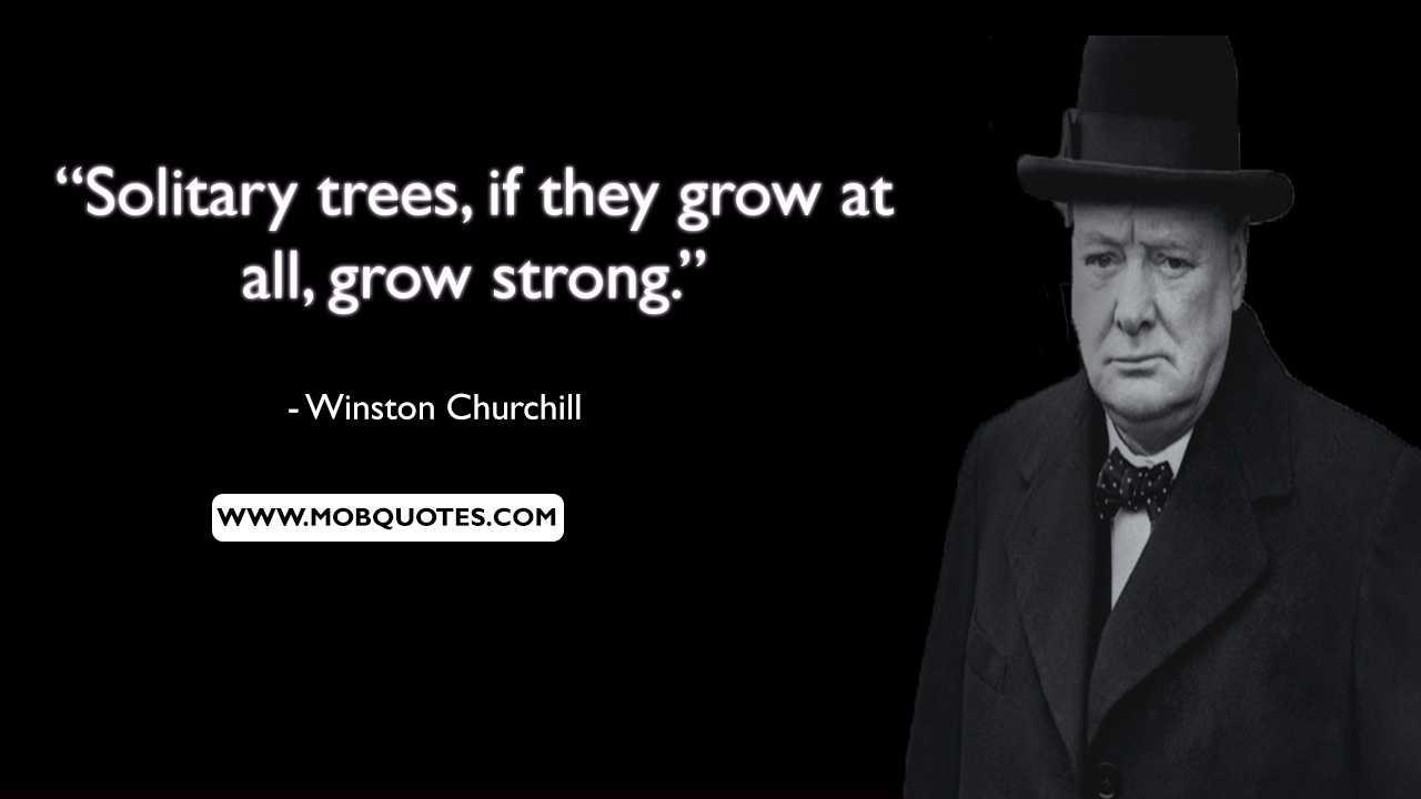 Winston Churchill Perfection Quote