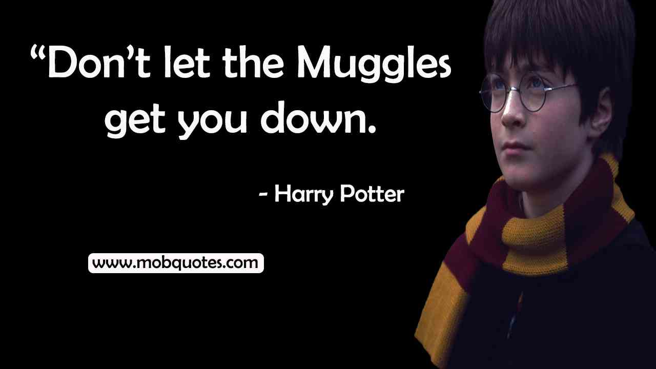 harry potter quotes about success